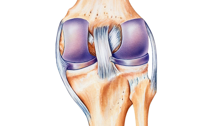 Ligament Injury Doctor in Jaipur
